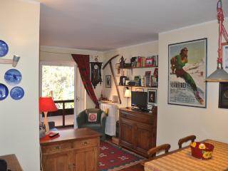 1 bedroom Apartment with Balcony in Clavesana - Clavesana vacation rentals