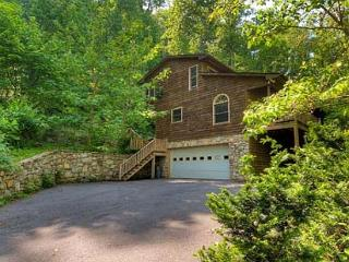 Creekside Mountain - Candler vacation rentals