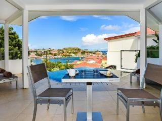 Modern 2 bedroom villa Wastra, close to town & a short walk to Shell Beach - Gustavia vacation rentals