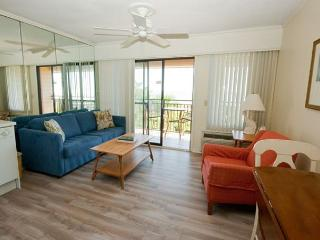 Seaside Villa 325 - 1 Bedroom 1 Bathroom Oceanfront Flat  Hilton Head, SC - Hilton Head vacation rentals