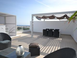 penthouse -  sea view, walking distance to all - Marbella vacation rentals