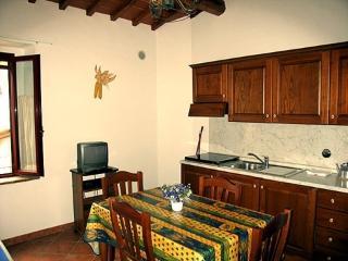Apartment 506 - Castellina In Chianti vacation rentals