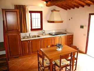 1 bedroom Apartment with Shared Outdoor Pool in Castellina In Chianti - Castellina In Chianti vacation rentals