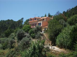 4 bedroom Cottage with Internet Access in Oliveira do Hospital - Oliveira do Hospital vacation rentals