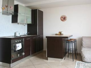 One bedroom flat - Prague vacation rentals