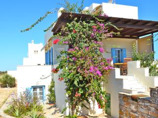 Seaside Villa Dimitra ,Plaka beach, Naxos Island - Plaka vacation rentals