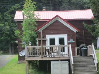Nice House with Deck and A/C - Hancock vacation rentals