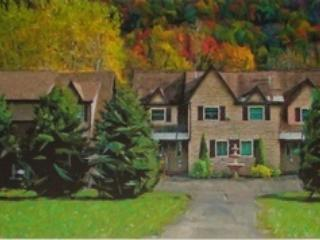 Private Townhome with  serene flowing creek - Ellicottville vacation rentals