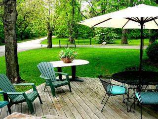 3200sf Cabin W/4BR, 2.5 BA,2000sf Deck - Lore City vacation rentals