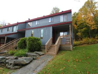 7F Black Bear Lane - West Dover vacation rentals