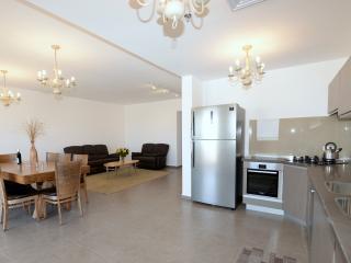 4BR Luxury Apt in Downtown Jerusalem Saidoff Tower - Gedera vacation rentals