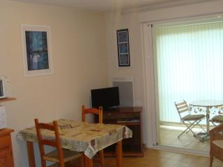 Nice Studio with Internet Access and Television - Greoux les Bains vacation rentals