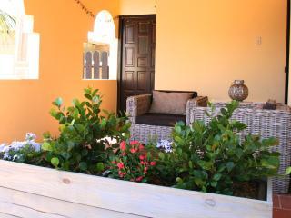 Birdhouse: Studio + kitchen + porch - Aruba vacation rentals