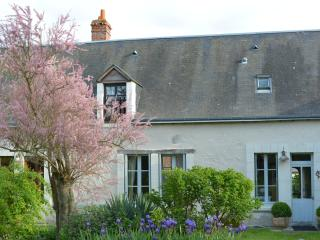 Les Roses -  4 b/r House with Pool - Loches vacation rentals