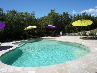 Haute Provence, La Buisse Gîte Lure 4p, tennis, piscine chauffée, spa, sauna - Banon vacation rentals