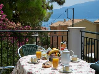 Faos Luxury 3 bedroom Apartment,1st floor. - Agia Efimia vacation rentals