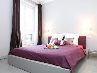 26.LUXURIOUS FLAT - DIRECT VIEW OF EIFFEL TOWER - Paris vacation rentals