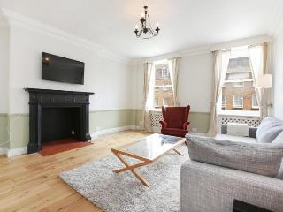 49. 1BR - Marble Arch - Oxford Street - Hyde Park - London vacation rentals