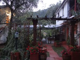New Accommodation for Families & Groups - Dolceacqua vacation rentals