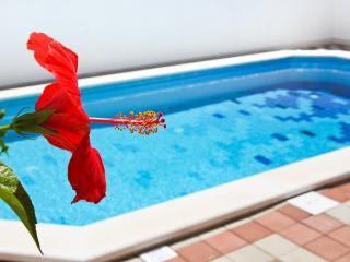 Comfortable 2 bedroom Condo in Cavtat - Cavtat vacation rentals