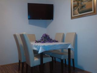 Nice Condo with Internet Access and A/C - Kastel Sucurac vacation rentals