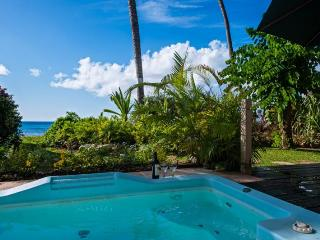 Classic 2 bedroom apartment, with stunning sunsets and surrounding gardens - Weston vacation rentals