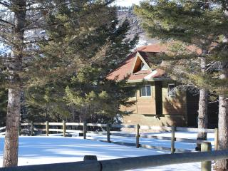 Beautiful 3 bedroom Gardiner Cabin with Mountain Views - Gardiner vacation rentals