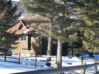 3 bedroom Cabin with Stove in Gardiner - Gardiner vacation rentals
