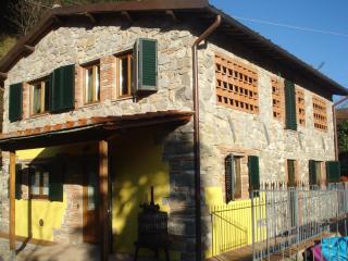 House in Lucca San Martino - TFR67 - San Martino in Freddana vacation rentals