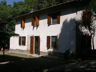 Villa Pisa Hillside country house - TFR18 - San Giuliano Terme vacation rentals