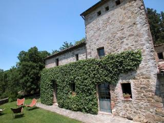 Comfortable House with Internet Access and DVD Player - Sarteano vacation rentals