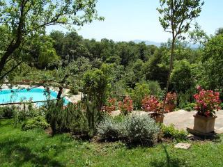 Bright 7 bedroom House in San Casciano dei Bagni - San Casciano dei Bagni vacation rentals
