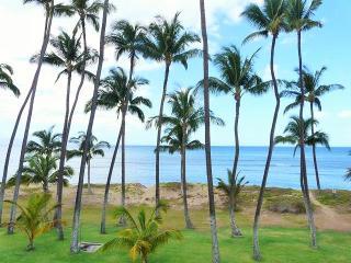 Hale Kai O'Kihei 1 Bedroom 318 - Kihei vacation rentals