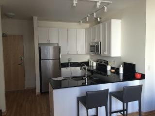 Beautiful Apartment in the Heart of Minneapolis! - Minneapolis vacation rentals