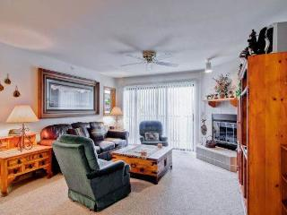 2 bedroom House with Internet Access in Frisco - Frisco vacation rentals
