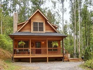 Snowy Cove | 2 BR Mountain Cabin with Hot Tub and Fireplace - Blue Ridge Mountains vacation rentals