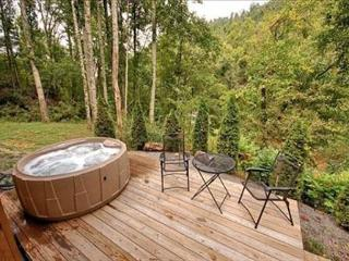 Snowy Cove | 2 BR Mountain Cabin with Hot Tub and Fireplace - Black Mountain vacation rentals