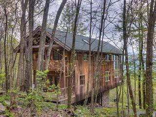 High Haven - Black Mountain vacation rentals