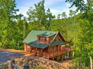 Blue Bear Cabin | 3 BR Asheville Area | Mountain Views | Gas Fireplace - Bat Cave vacation rentals