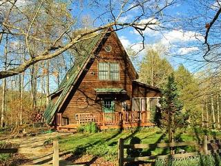 Little Faberge Egg | Private Getaway | Close to Hiking Trails - Old Fort vacation rentals