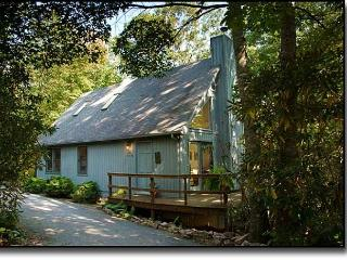 Stone Circle Cottage - Swannanoa vacation rentals