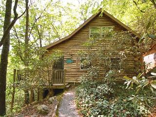 Whitworth Cabin - Montreat vacation rentals