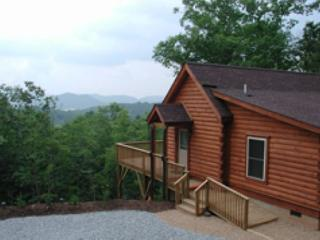 Annie's Cozy Cabin - Chimney Rock vacation rentals