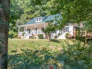 Jarrett Creek Cottage - Spruce Pine vacation rentals