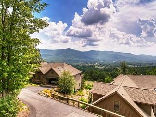 Red Plum Town Home - Black Mountain vacation rentals