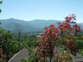Shadowridge - Black Mountain vacation rentals