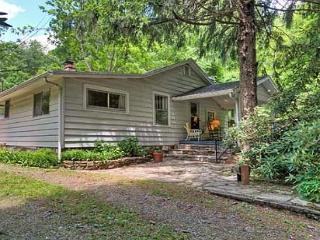 Cozy 3 bedroom Vacation Rental in Black Mountain - Black Mountain vacation rentals