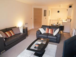 Luxury Apartment, St Pauls Square, Birmingham - Birmingham vacation rentals