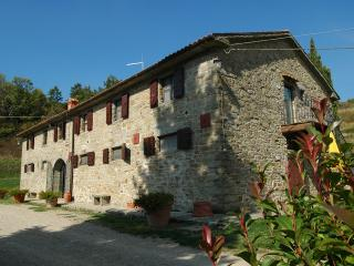 Nature and genuine hospitality in Tuscany - Castelfranco di Sopra vacation rentals