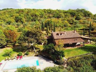 Perfect 5 bedroom Villa in Castiglion Fiorentino - Castiglion Fiorentino vacation rentals